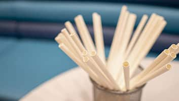 Goiás torna obrigatório o uso de canudo biodegradável em restaurantes, bares e lanchonetes.