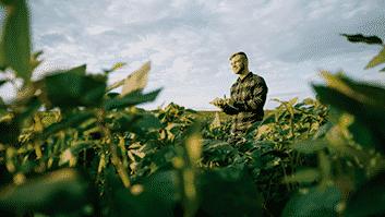 Associação Goiana de Produtores de Sementes não pode fiscalizar imóveis rurais em Jataí.